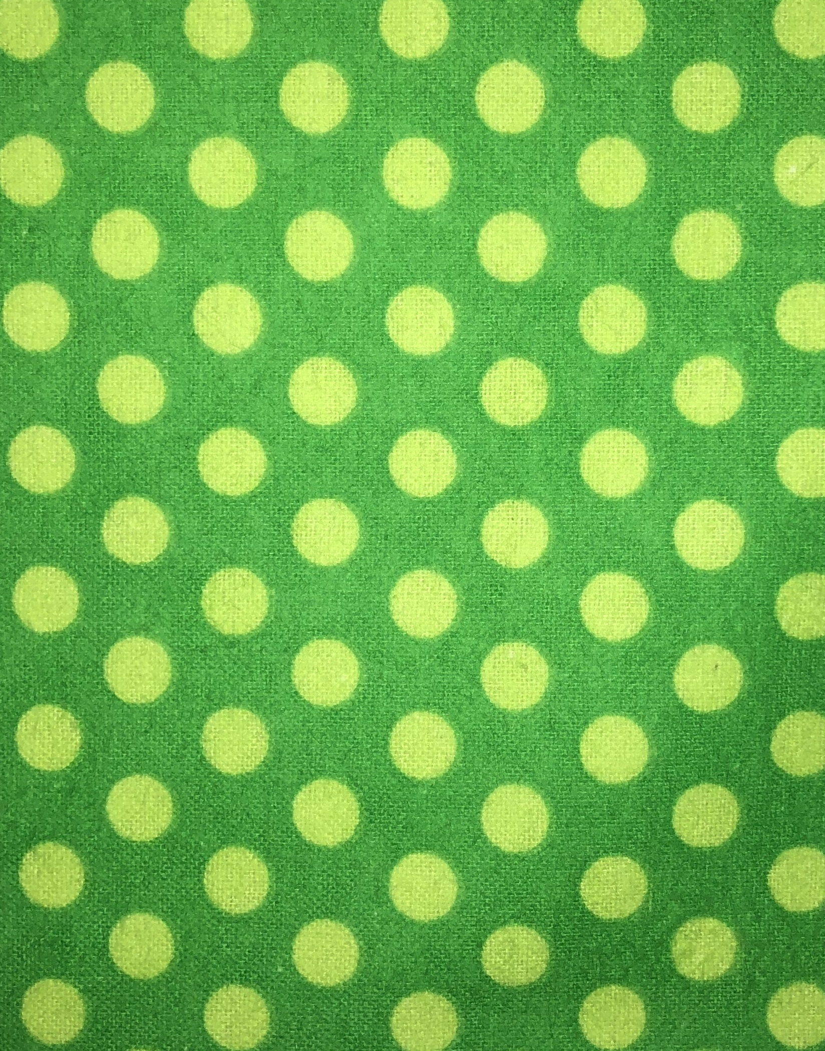 Green Polka Dot Flannel - 1/2m cut 55175
