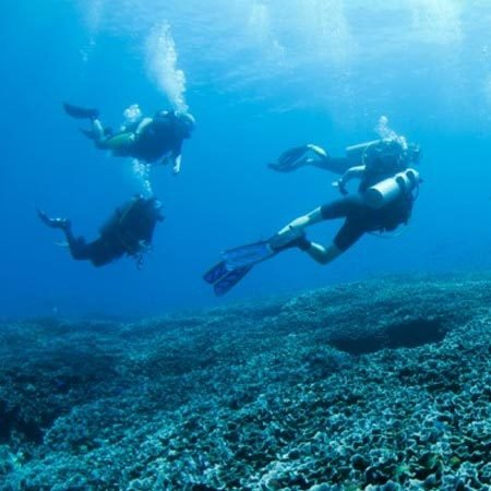 2 Dives