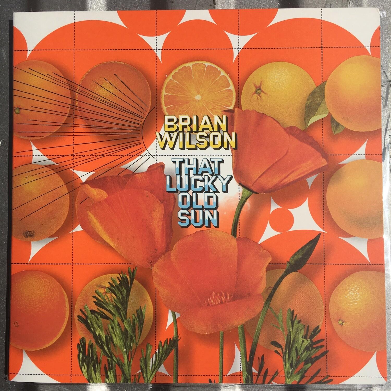 Brian Wilson (The Beach Boys) ~ That Lucky Old Sun ~ (USED) Vinyl LP ~ Excellent Shape