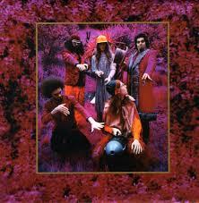 Captain Beefheart & His Magic Band - Grow Fins: Rarities (1965-1982) 5 CD Box Set (Rare) (Used) Excellent