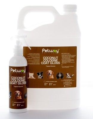 Petway Coconut Gloss