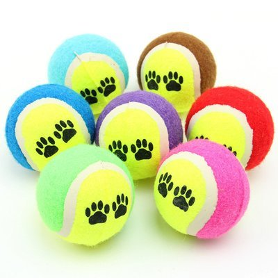 Small Dog Tennis Balls
