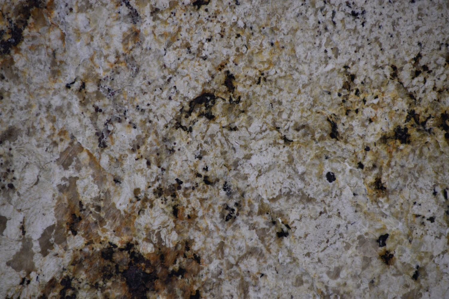 Granite - White Birch