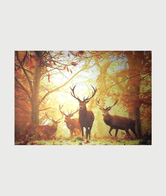 Billede i stål med krondyr i efterårs skov
