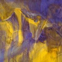 Mystic: Purple/Mustard