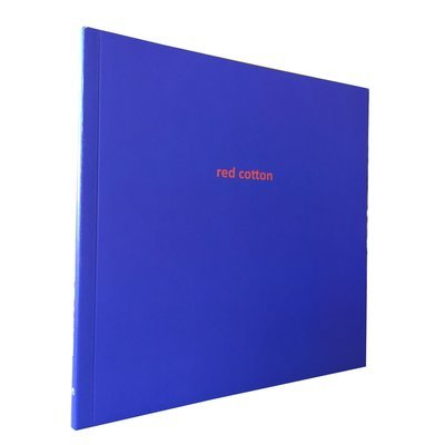 Red Cotton by Vangile Gantsho (Impepho Press)