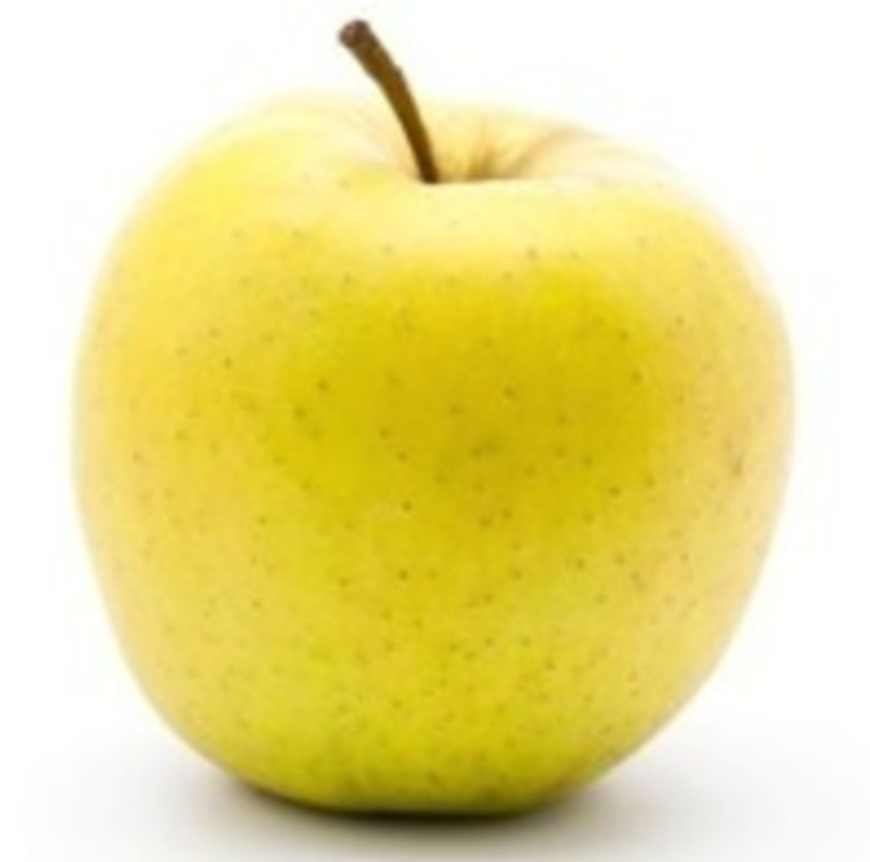 Golden Delicious - bare rooted 32