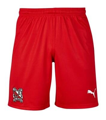 Puma Away Shorts 19/20 Junior