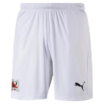 Puma Away Shorts 20/21 Adult (Pre-Order)
