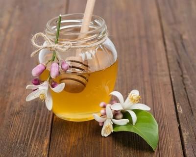 Orange Blossom Honey عسل زهور الموالح