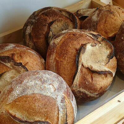 Country loaf خبزة ريفية