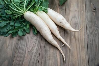 White radishes (1kg) فجل ابيض
