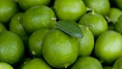 Organic Limes (500g) ليمون اورجانيك