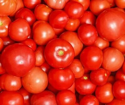 Organic Tomatoes (500g) طماطم اورجانيك