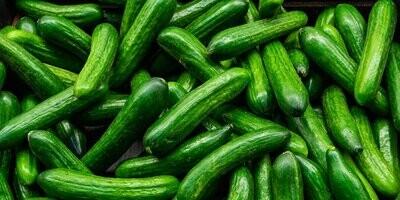Organic Cucumbers (500g) خيار اورجانيك