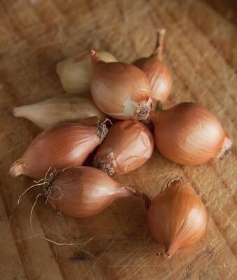 Organic Yellow Baby Onion (500g) بصل أصفر بيبي اورجانيك