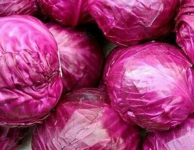 Red Cabbage (per head) (كرنب احمر (راس