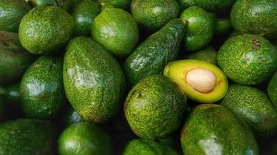 Avocado (set of 3) (افوكادو (٣ وحدات