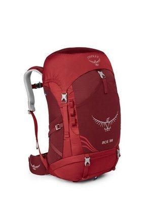 Osprey Ace 38 Kid's Backpack