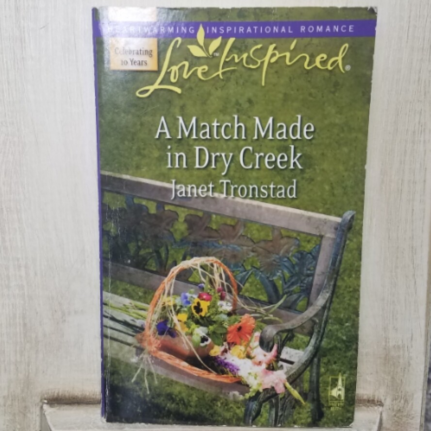 A Match Made in Dry Creek by Janet Tronstad