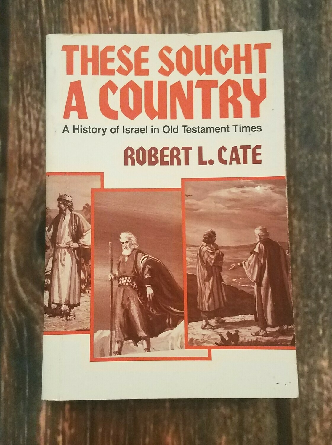 These Sought a Country by Robert L. Cate