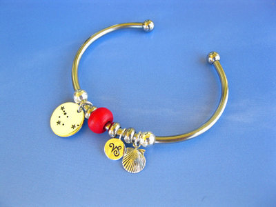 Zodiac charm bangle, stainless steel
