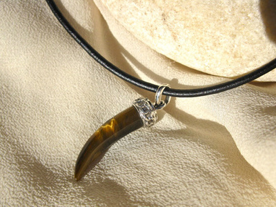 Tigers Eye + silver necklace, shark's tooth