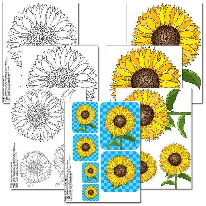 Sunflower Color Me Set