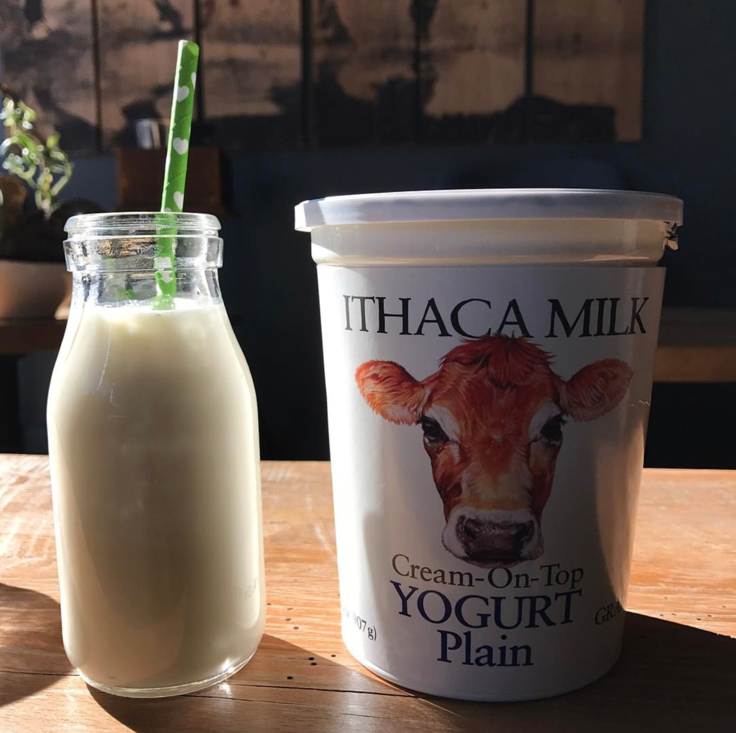 ITHACA MILK Maple Yogurt 32 oz