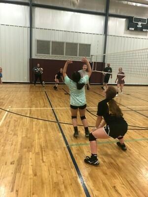 Volley Llamas: Grades 4-6