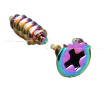 Rainbow Plated Mini Stud Earrings Screws