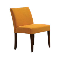 Dining Chair (Green/Blue)