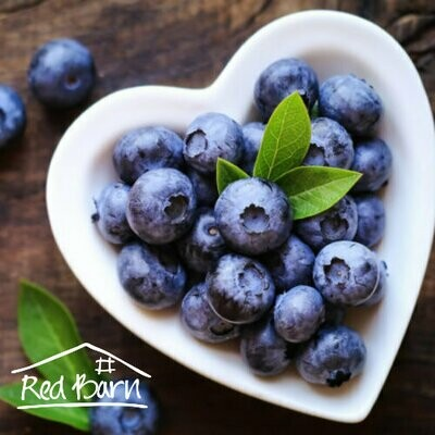 Blueberries - Frozen 500g