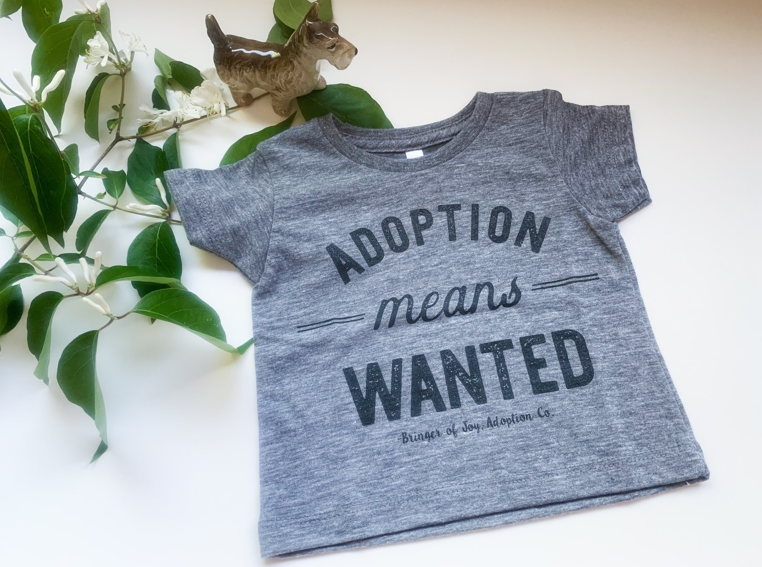Adoption Means Wanted Shirt - Kids (12-18 Months)