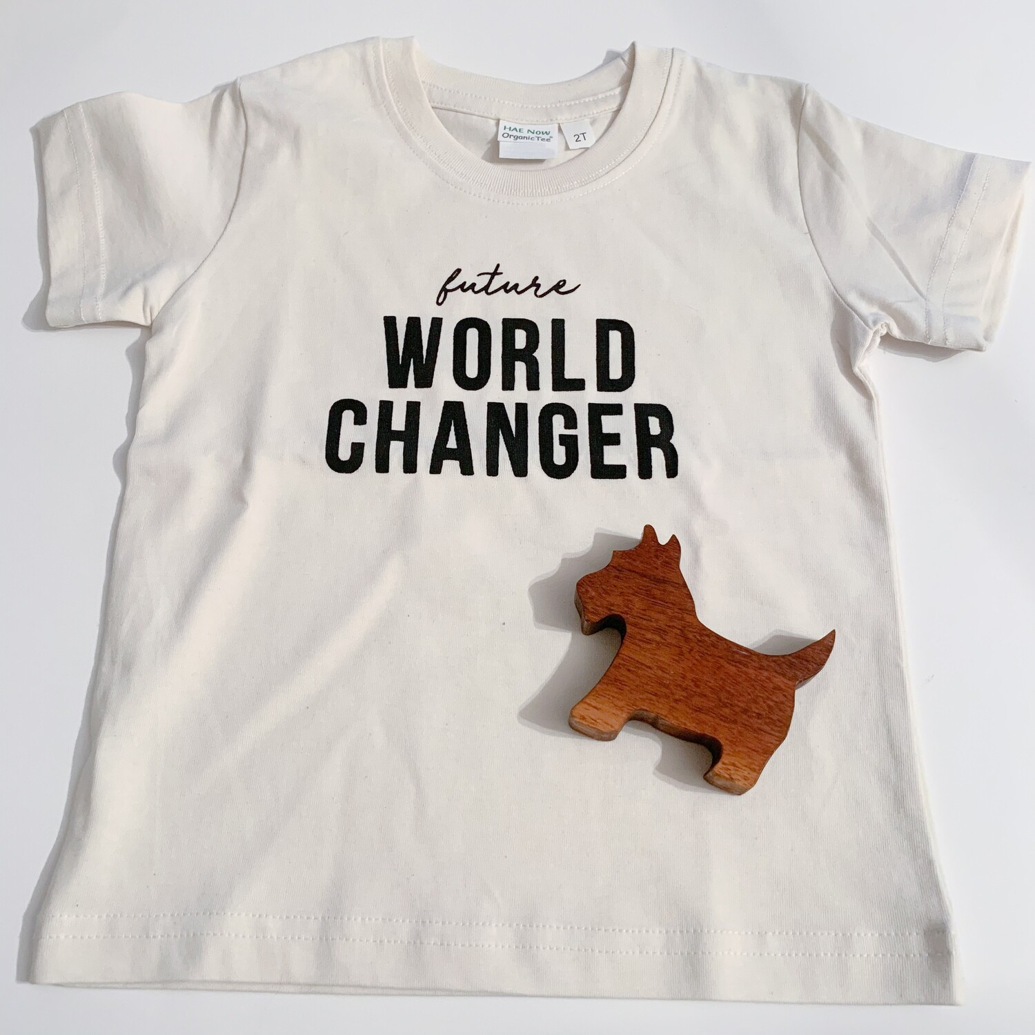 World Changer Shirt - Kids (2t)