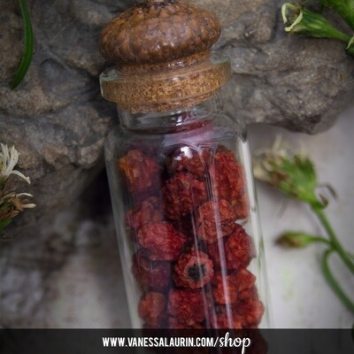 The Witch's Garden Collection: Mountain Ash amulet