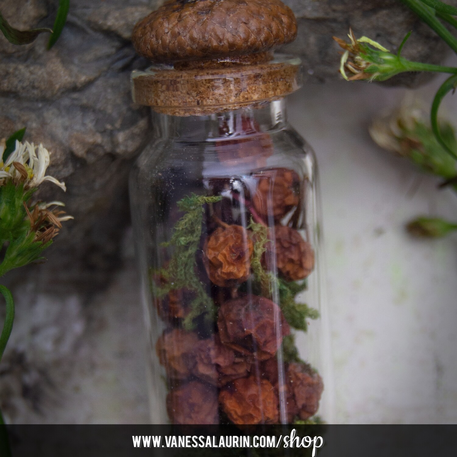 The Witch's Garden Collection: Bittersweet Nightshade amulet