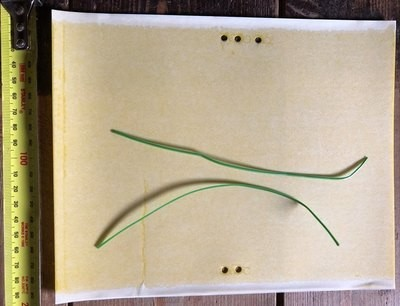 2 x Citrus Gall Wasp and Insect Trap - Double Sided Sticky Paper