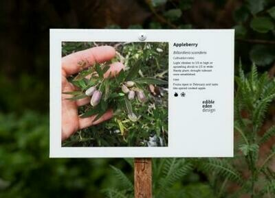 Bush Food Plant ID Signs - choose from 18 designs