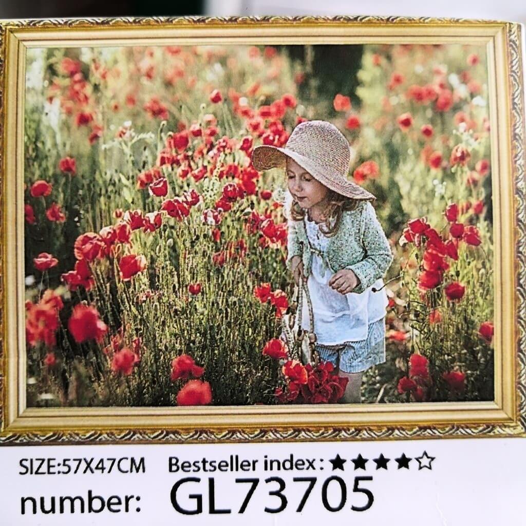 Алмазная мозаика без подрамника 50*40 см GL73705