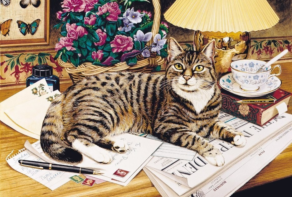 Cat with  newspapers by © Geoffrey Tristram
