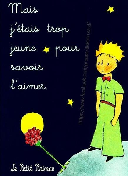 Little Prince with quote in french.