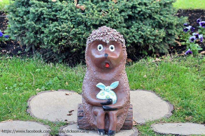 Hedgehog chocolate 🦔