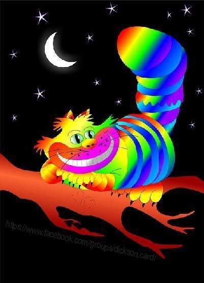 Rainbow cat on a tree