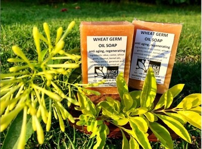 Wheat Germ Soap