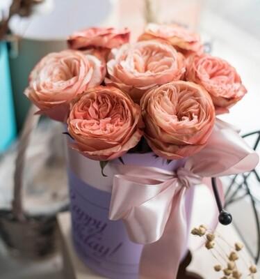 7 пионовидных роз в аквабоксе