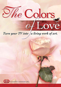 The Colors of Love - DVD - Used