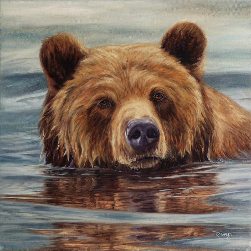 Grizzly Waters