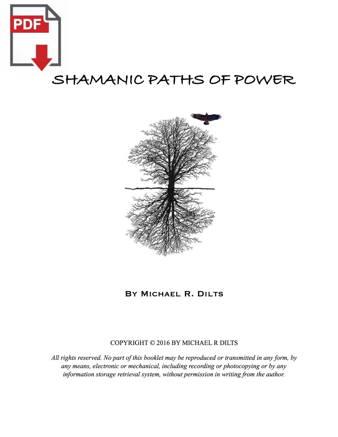 Shamanic Paths of Power by Michael R. Dilts [PDF]