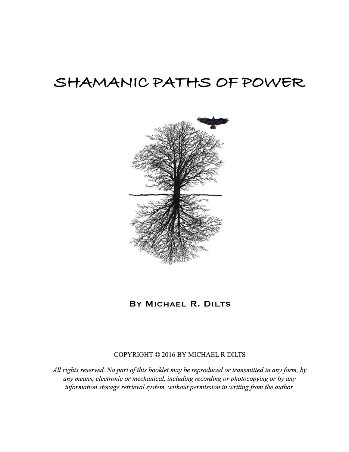 Shamanic Paths of Power by Michael R. Dilts [Booklet]